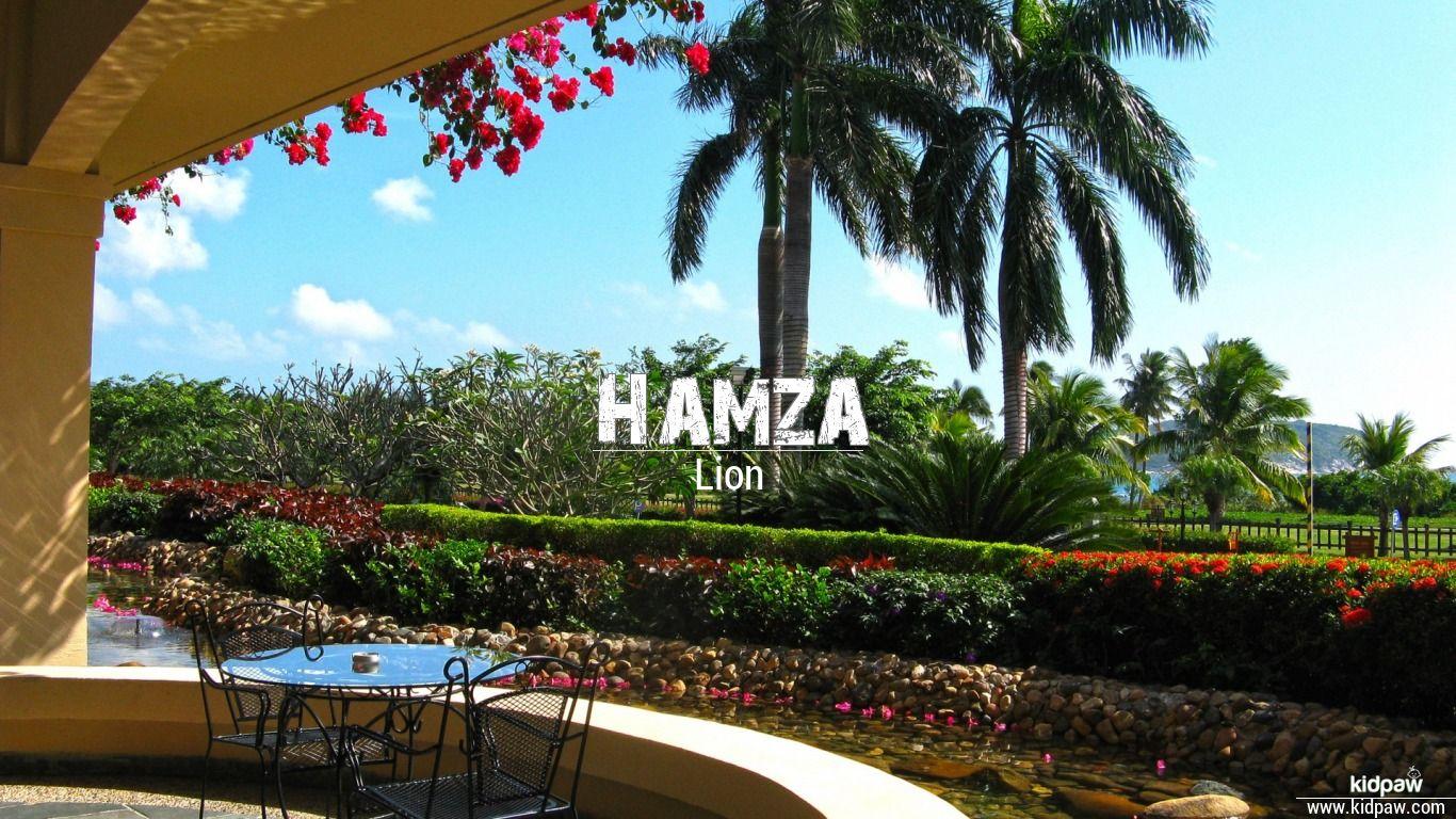 Hamza beautiful wallper