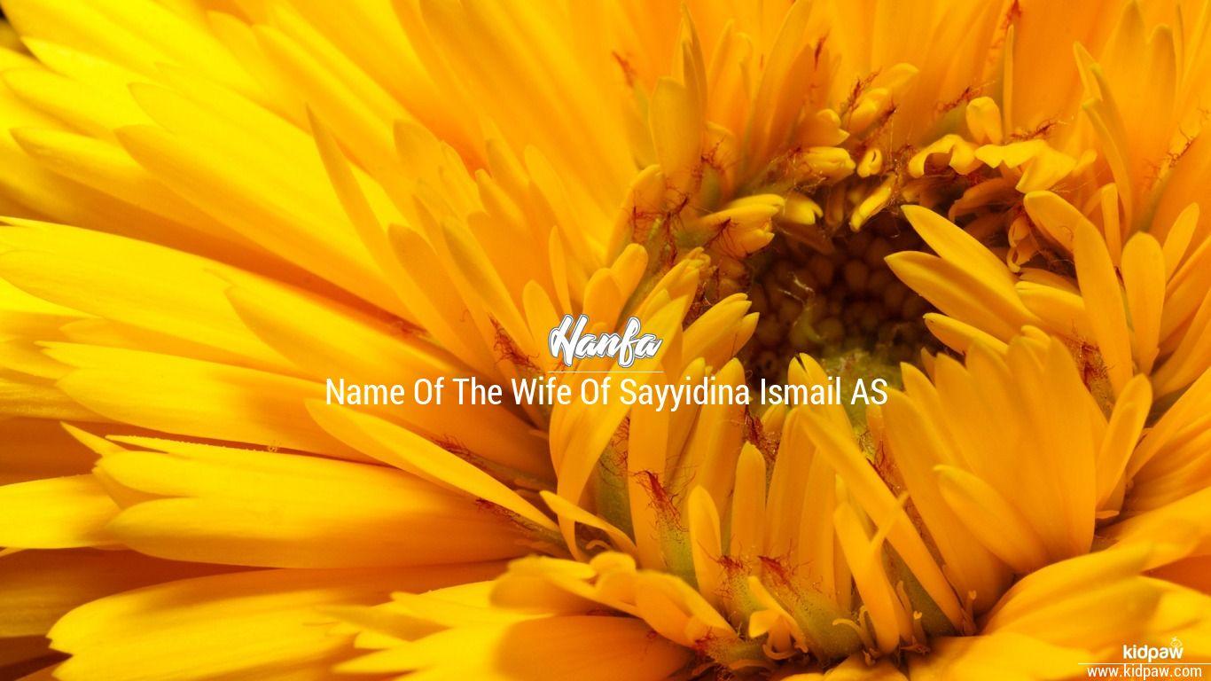 حنفا hanfa name meanings in urdu english baby names meanings