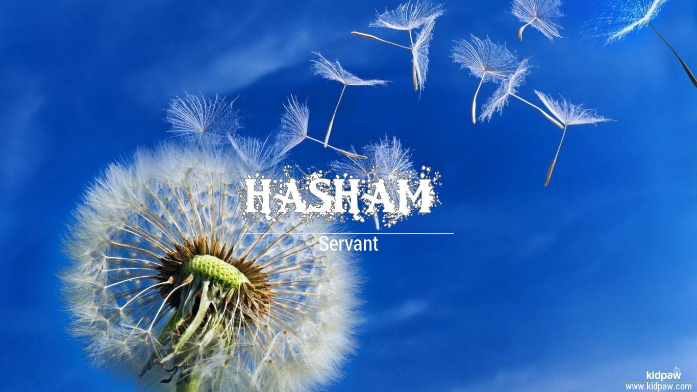 Hasham beautiful wallper