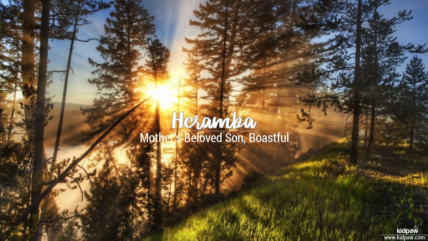 Heramba beautiful wallper