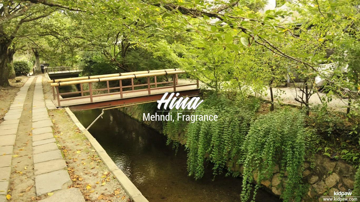 حنا | Hina Name Meaning in Urdu, Arabic names for Girls