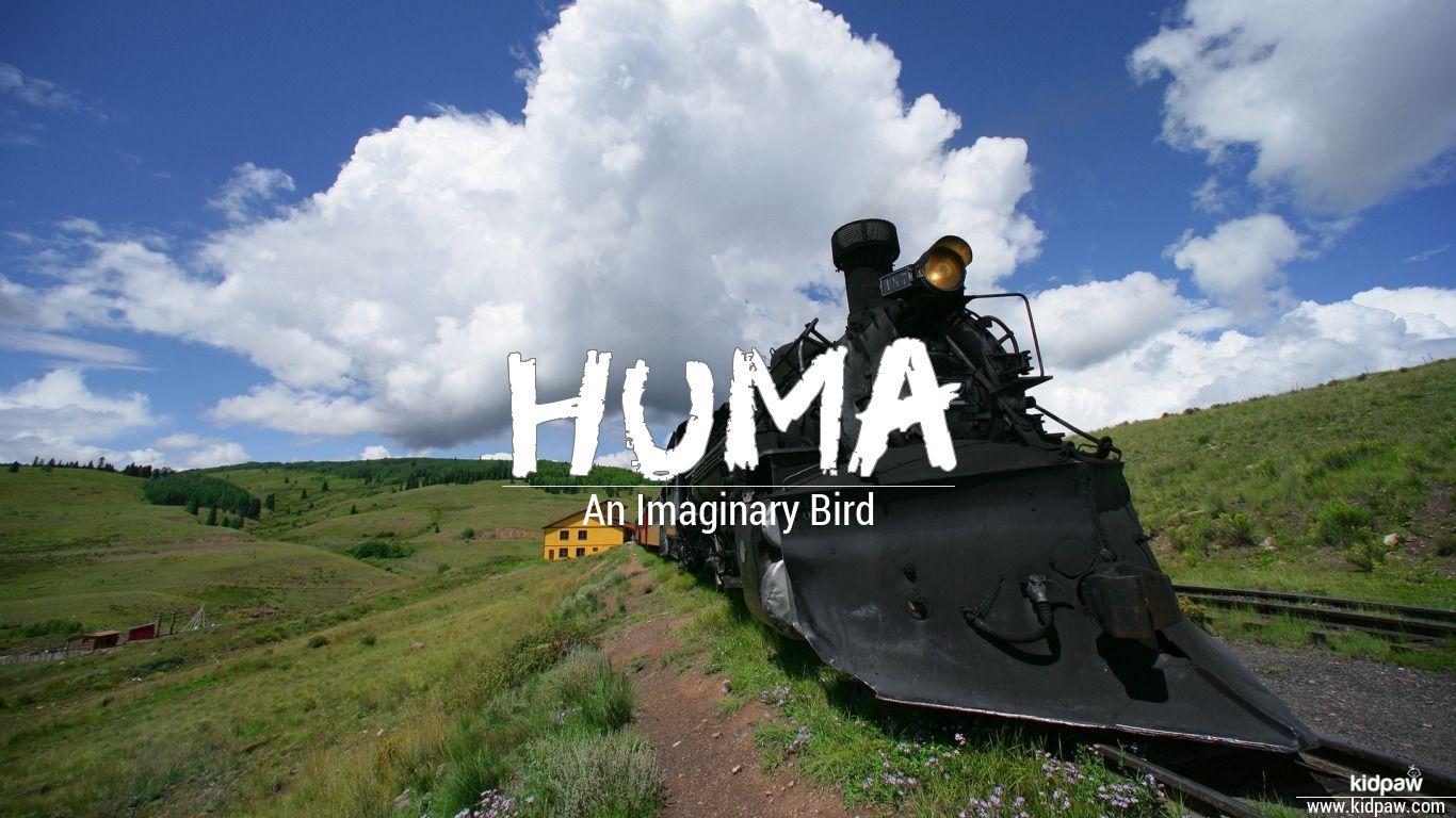 ہمہ | Huma Name Meaning in Urdu, Arabic names for Girls