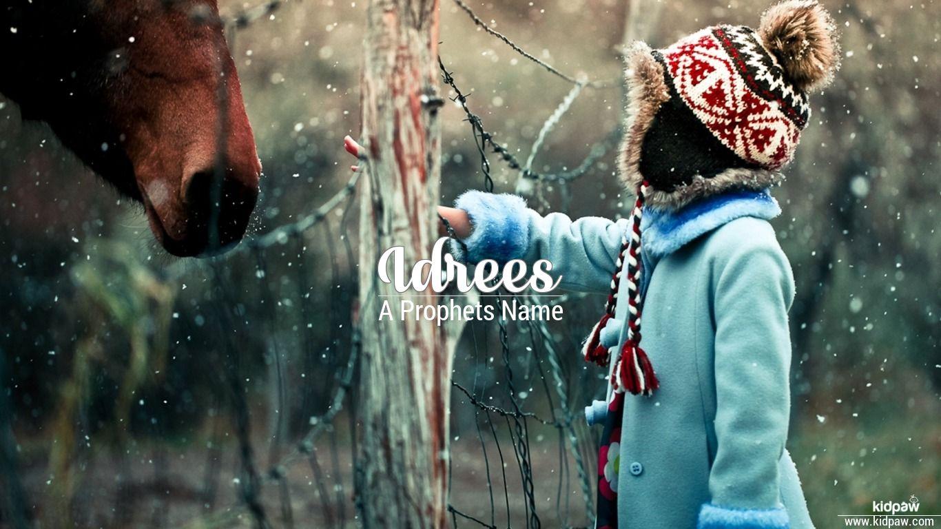 ادریس Idrees Name Meaning In Urdu Arabic Names For Boys