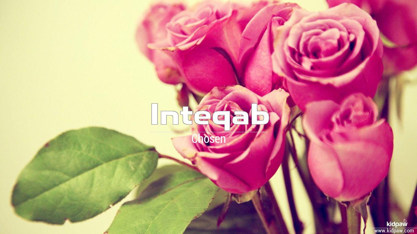 Inteqab beautiful wallper