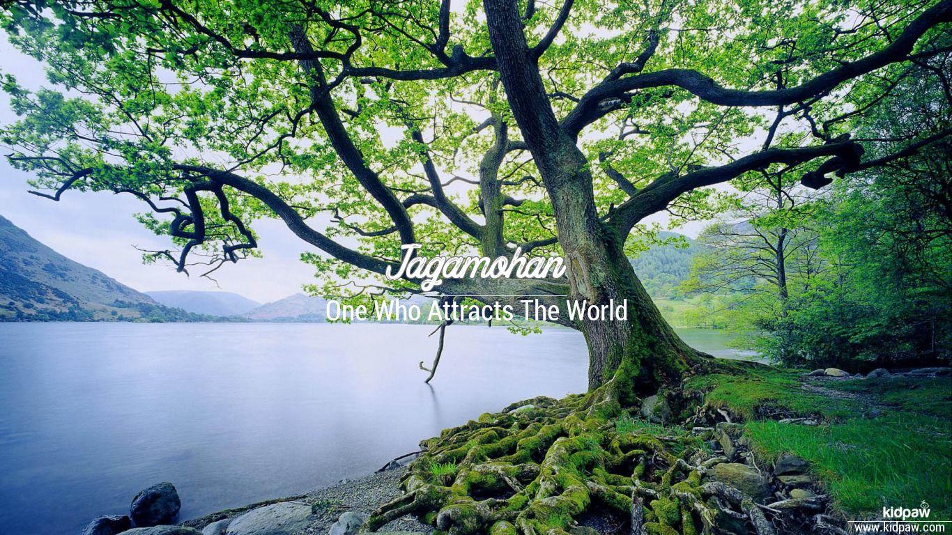 Jagamohan beautiful wallper