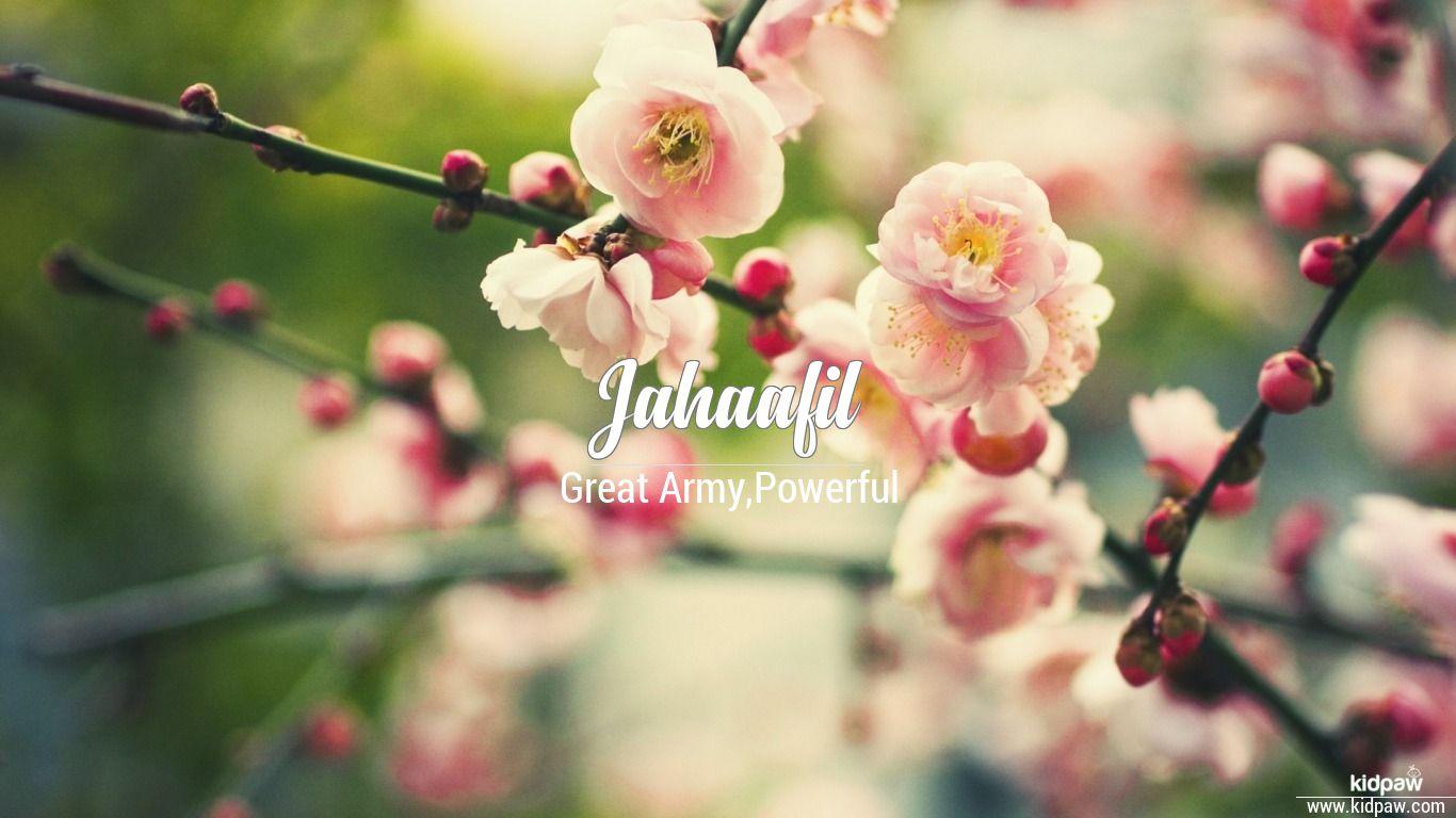 Jahaafil beautiful wallper