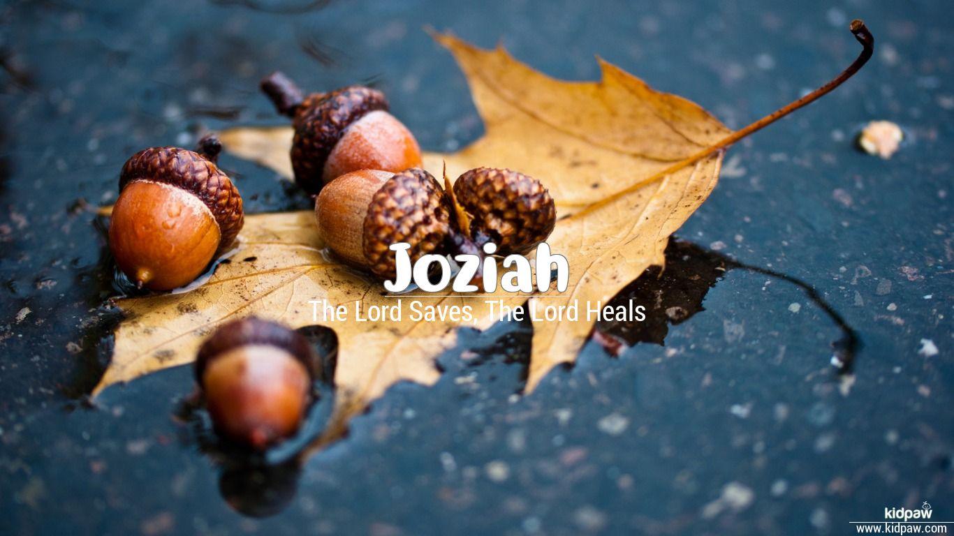 Joziah beautiful wallper