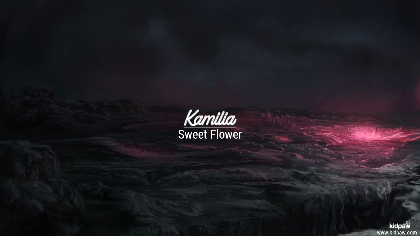 Kamilia beautiful wallper