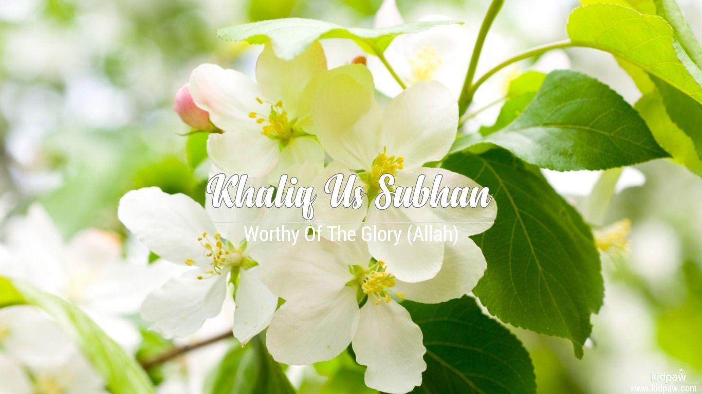 Khaliq us subhan beautiful wallper