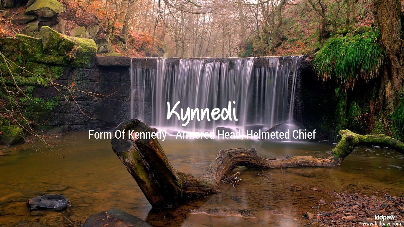 Kynnedi beautiful wallper
