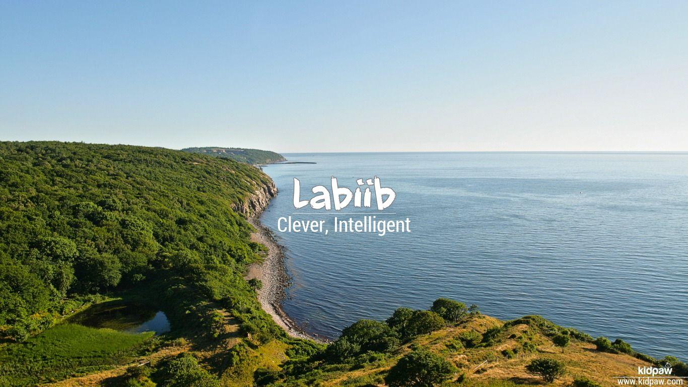 Labiib beautiful wallper