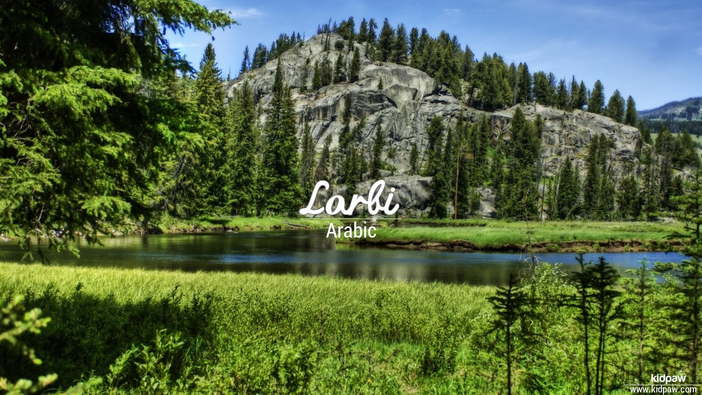 Larbi beautiful wallper