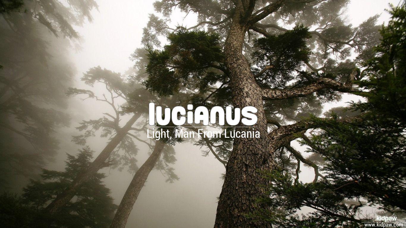 Lucianus beautiful wallper