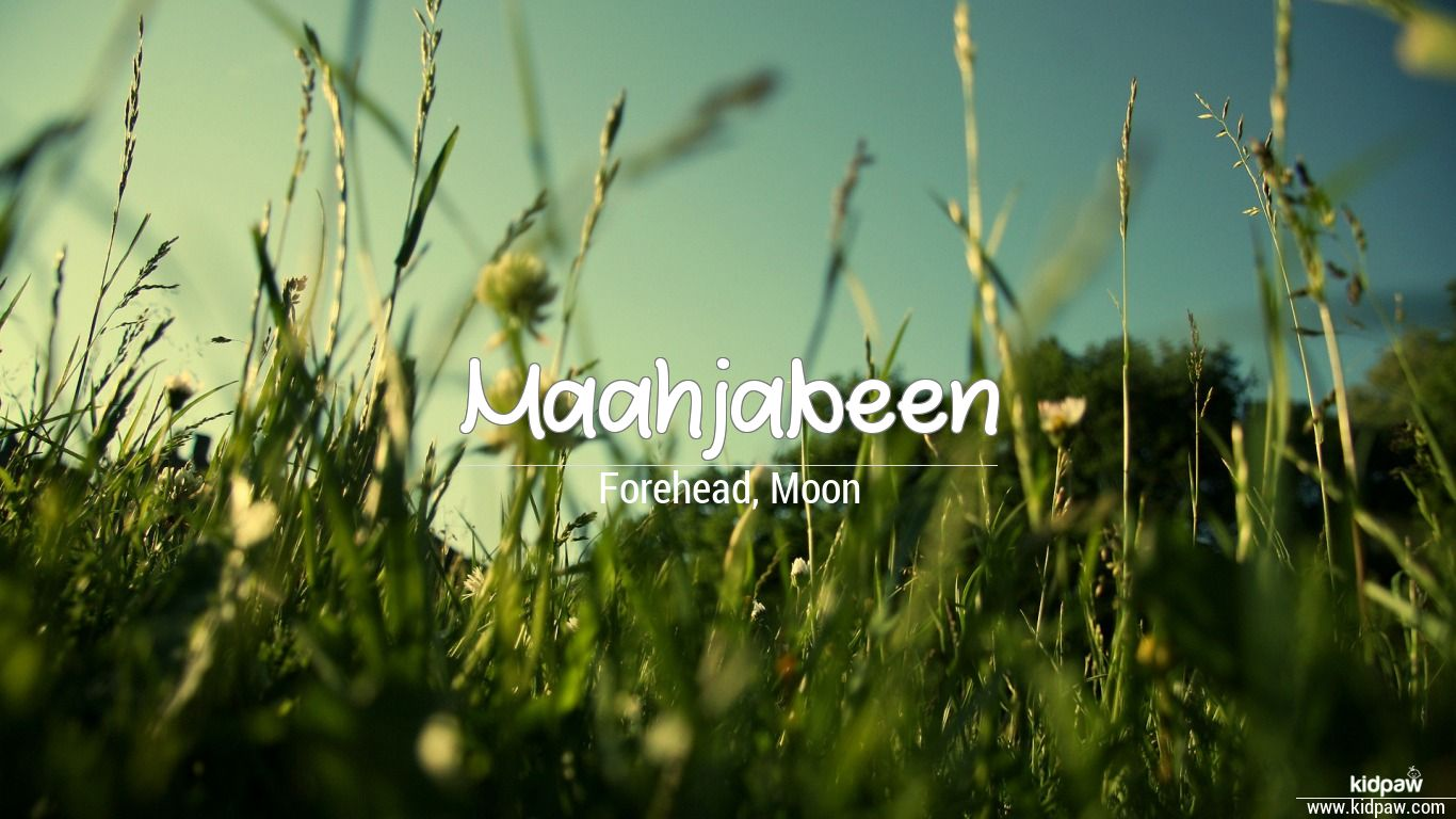 Maahjabeen 3D Name Wallpaper for Mobile ...