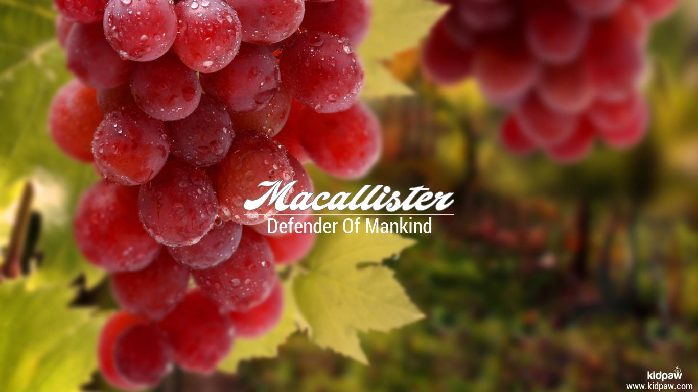Macallister beautiful wallper