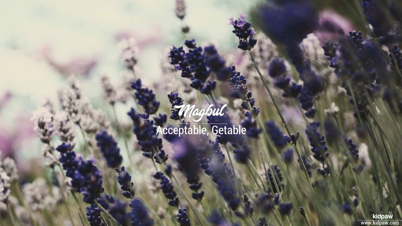 Magbul beautiful wallper