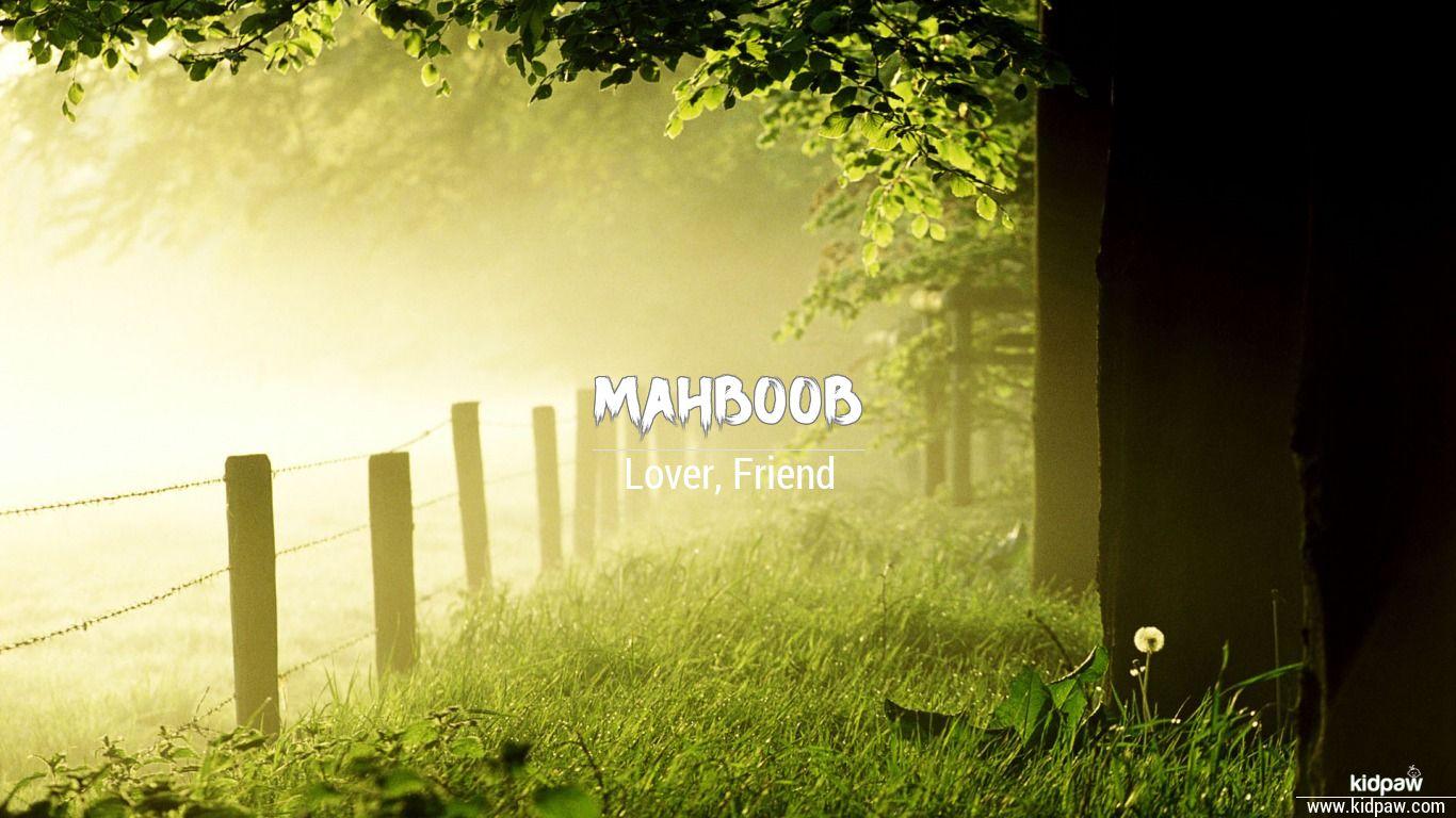 Mahboob beautiful wallper