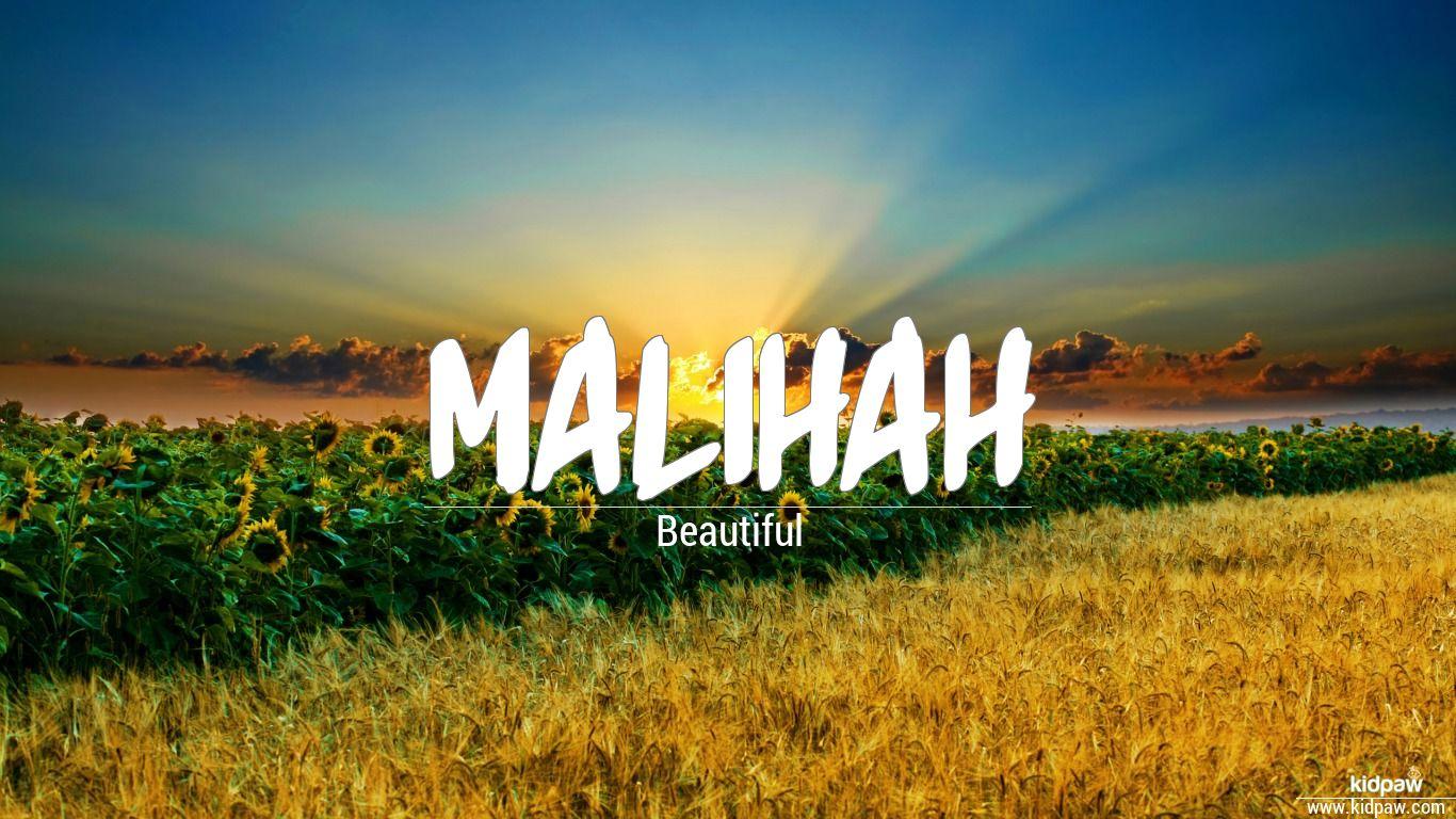ملیحہ Malihah Name Meaning In Urdu Arabic Names For Girls