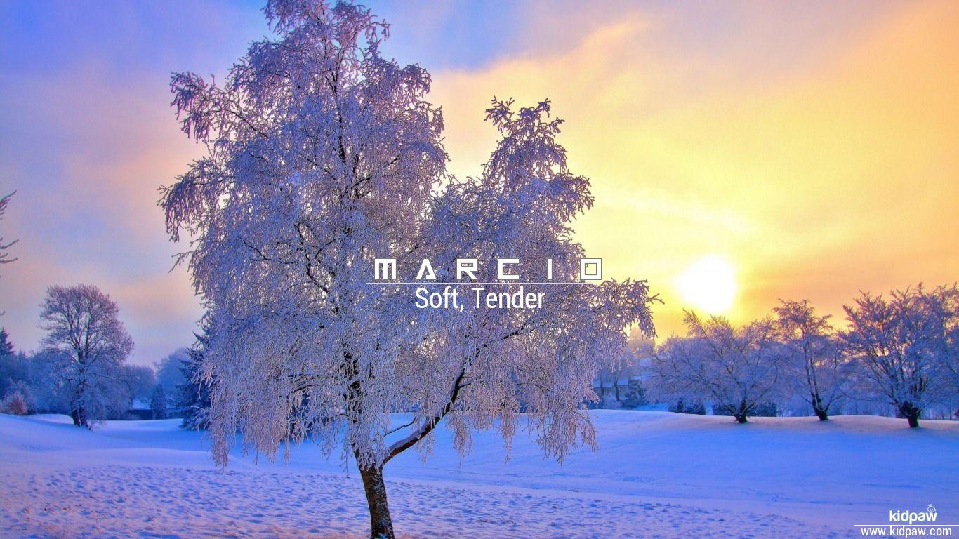 Marcio beautiful wallper