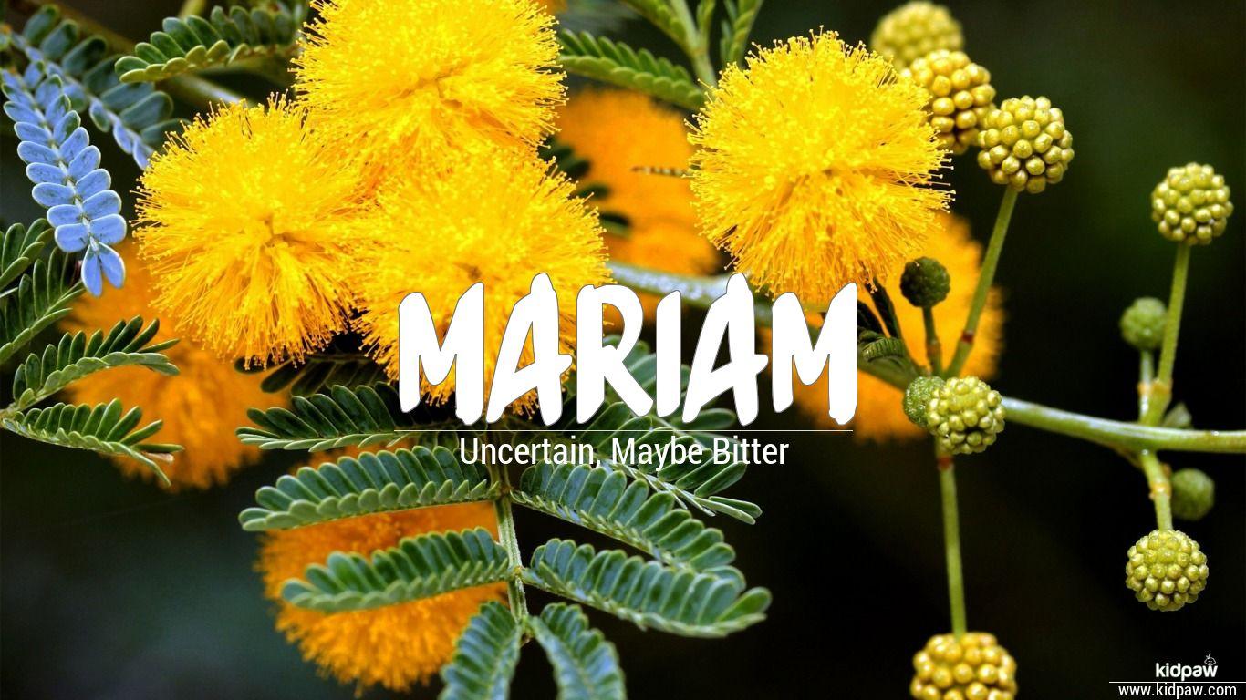 مريم   Mariam Name Meaning in Urdu, Arabic names for Girls