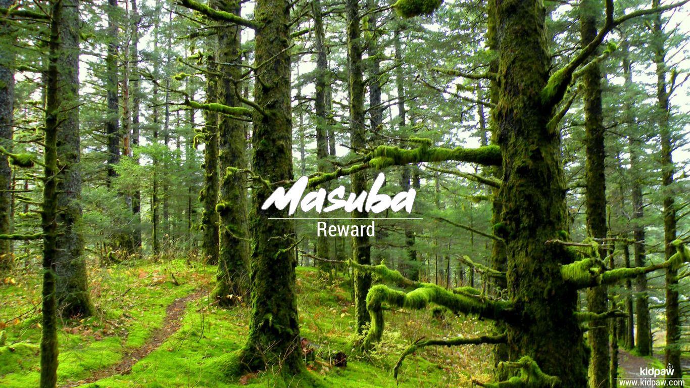 Masuba beautiful wallper