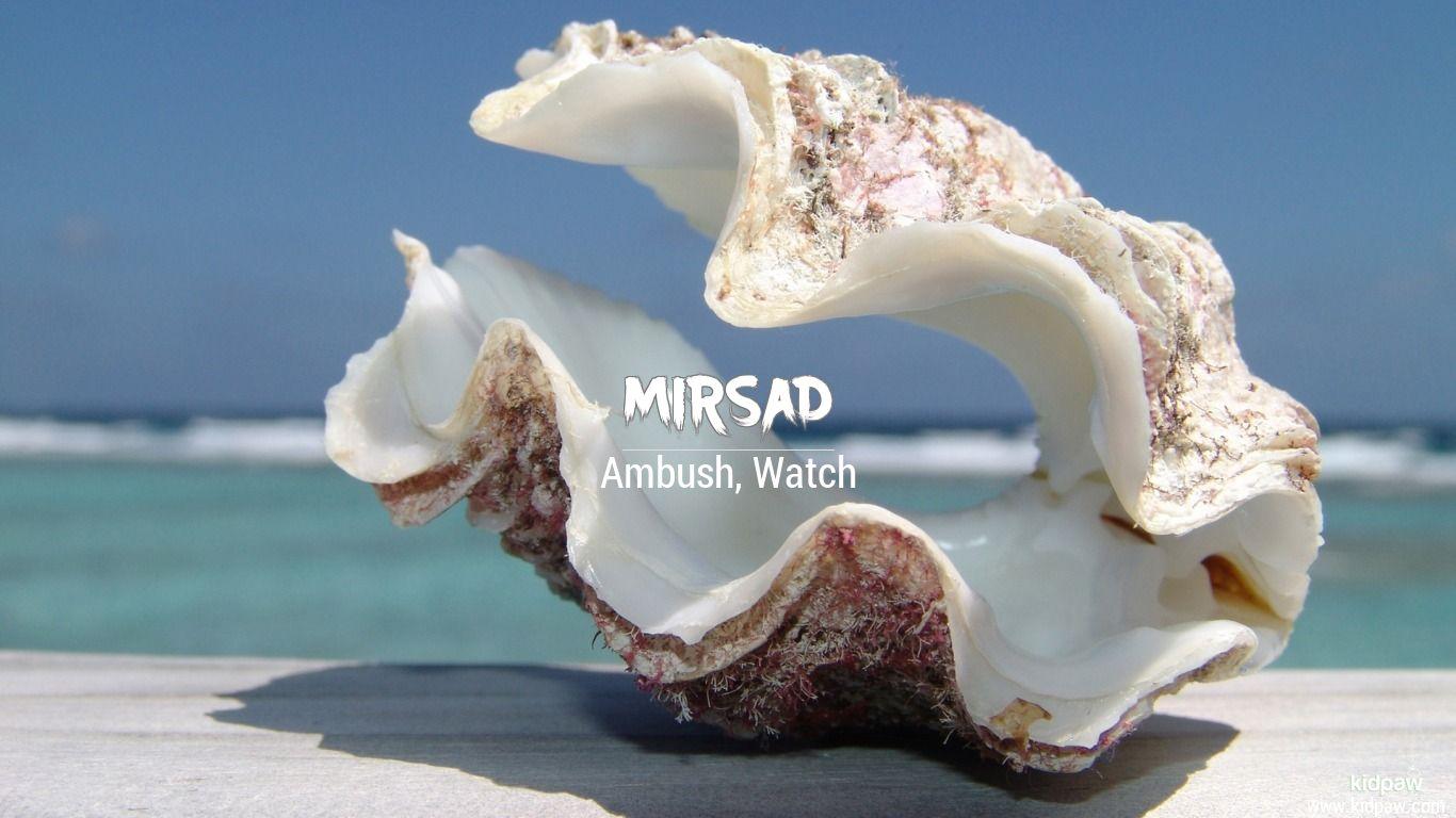 Mirsad beautiful wallper
