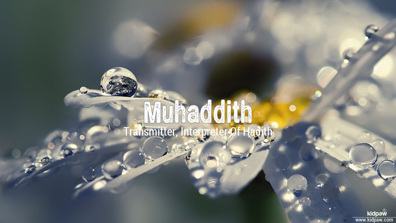 Muhaddith beautiful wallper