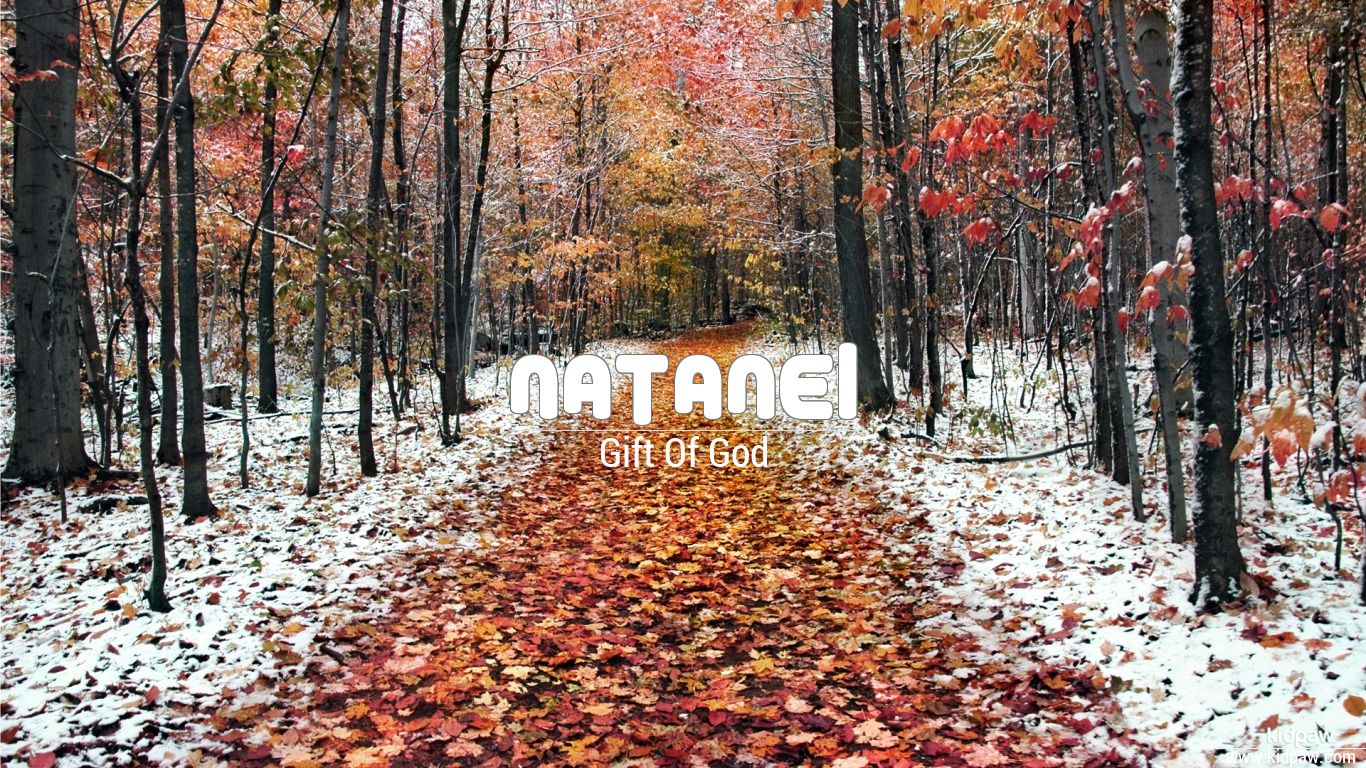 Natanel beautiful wallper