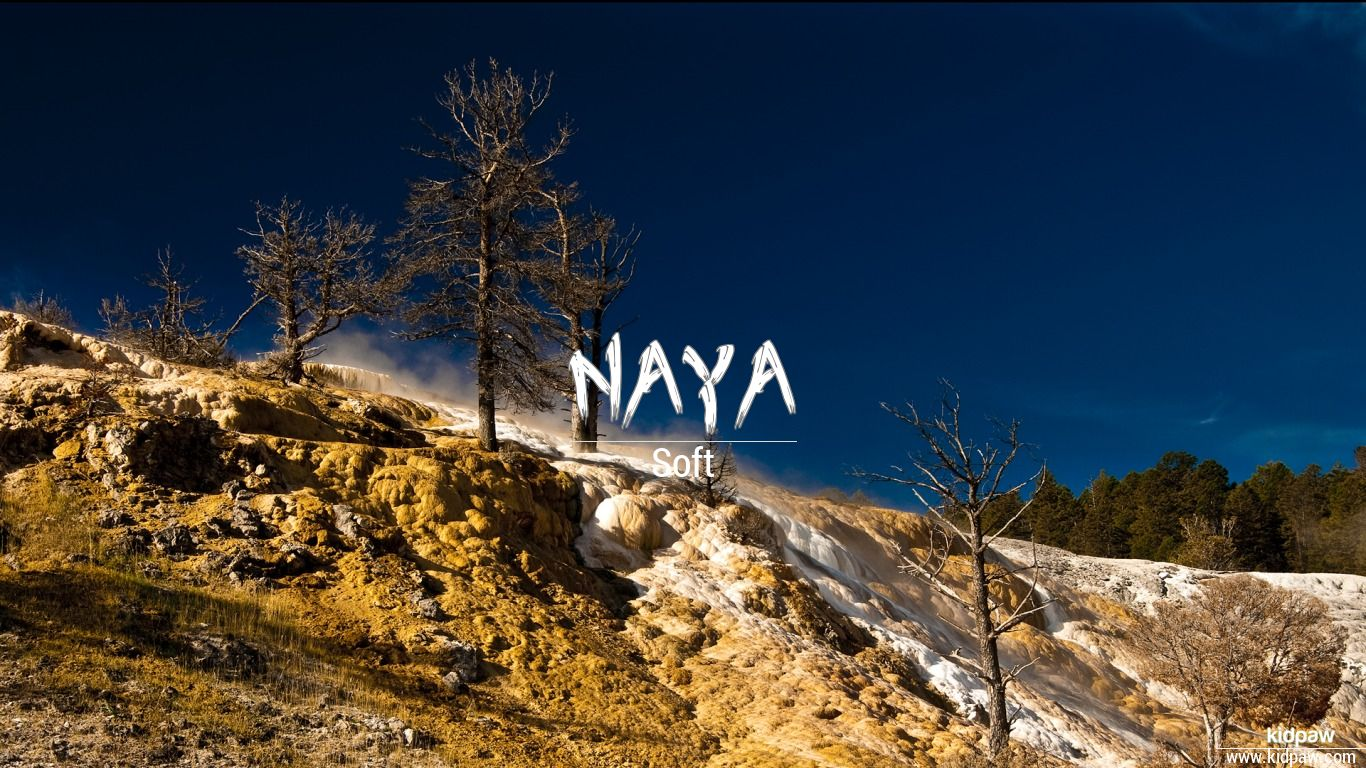 नाया | Naya Name Meaning in Hindi, Latest Indian Baby Girl ...