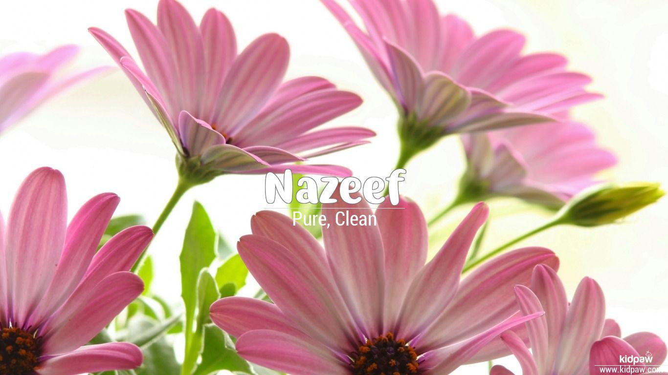 Nazeef beautiful wallper