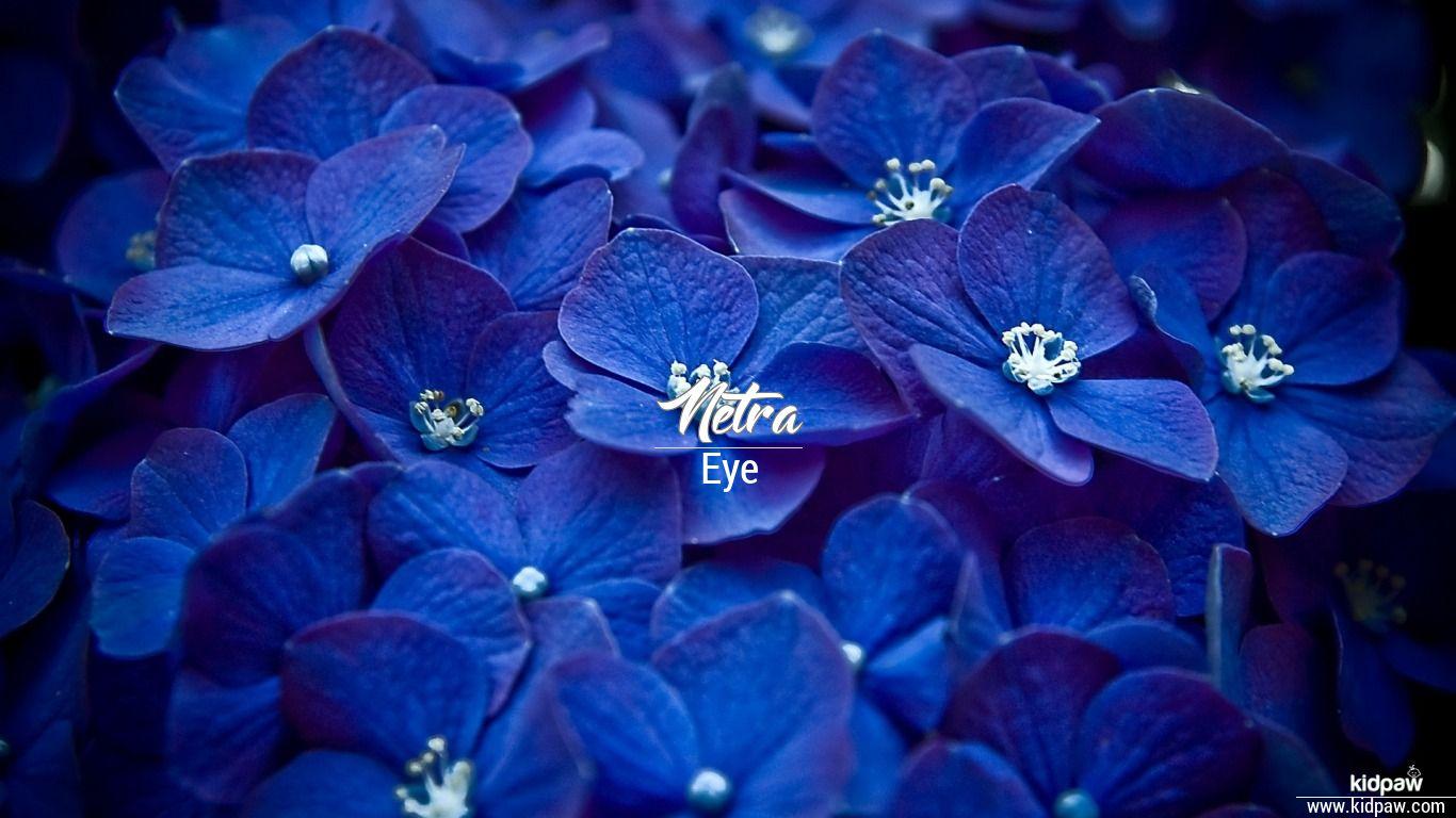 Netra beautiful wallper