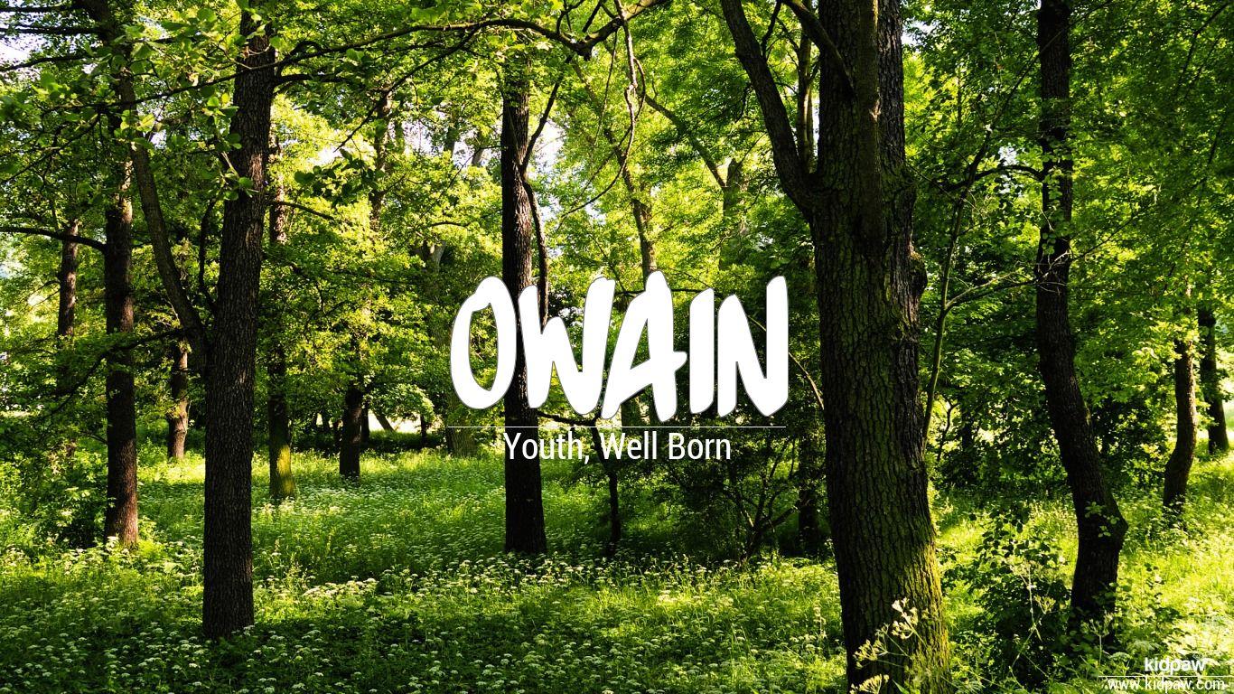 Owain beautiful wallper