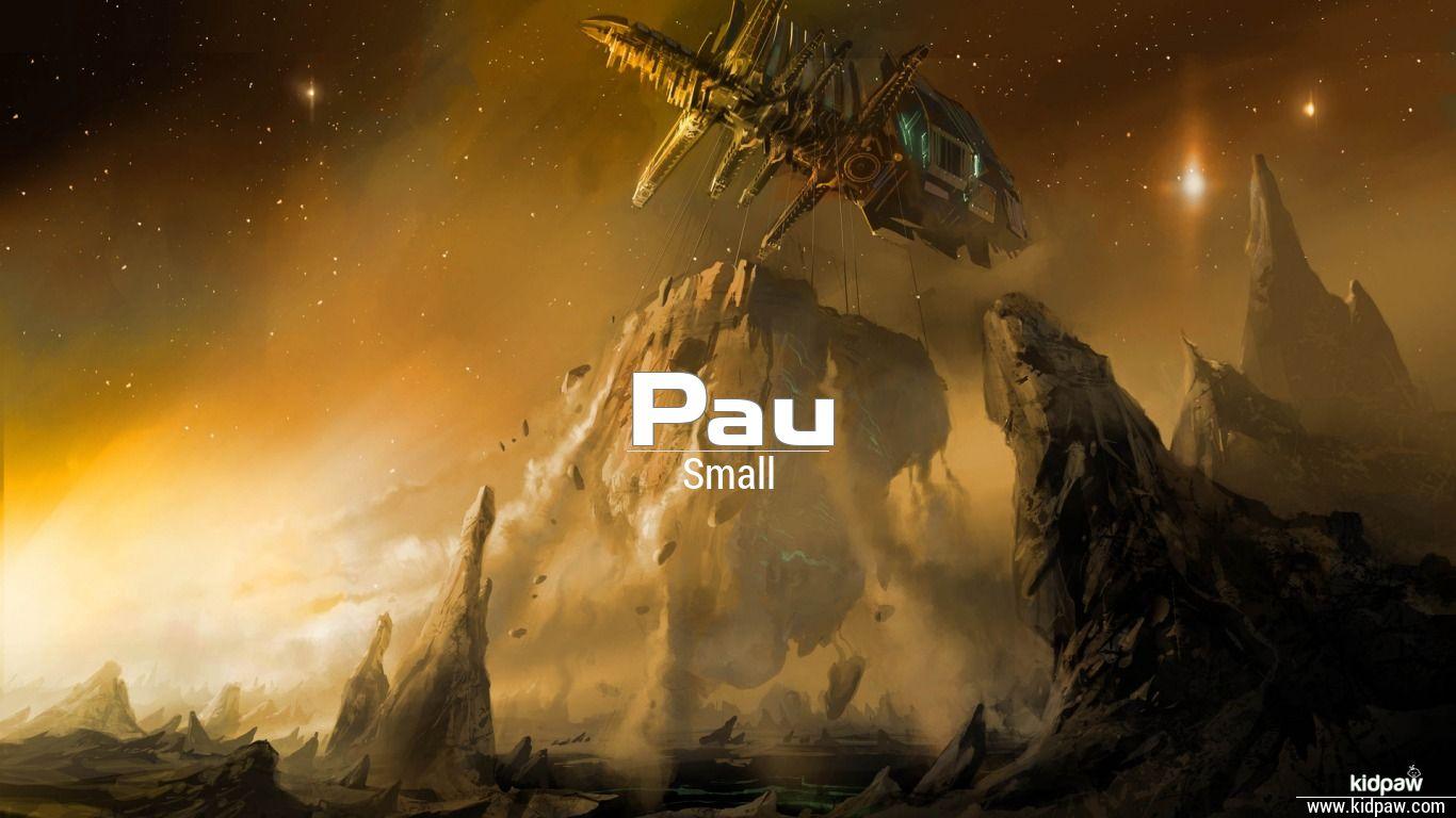 Pau beautiful wallper