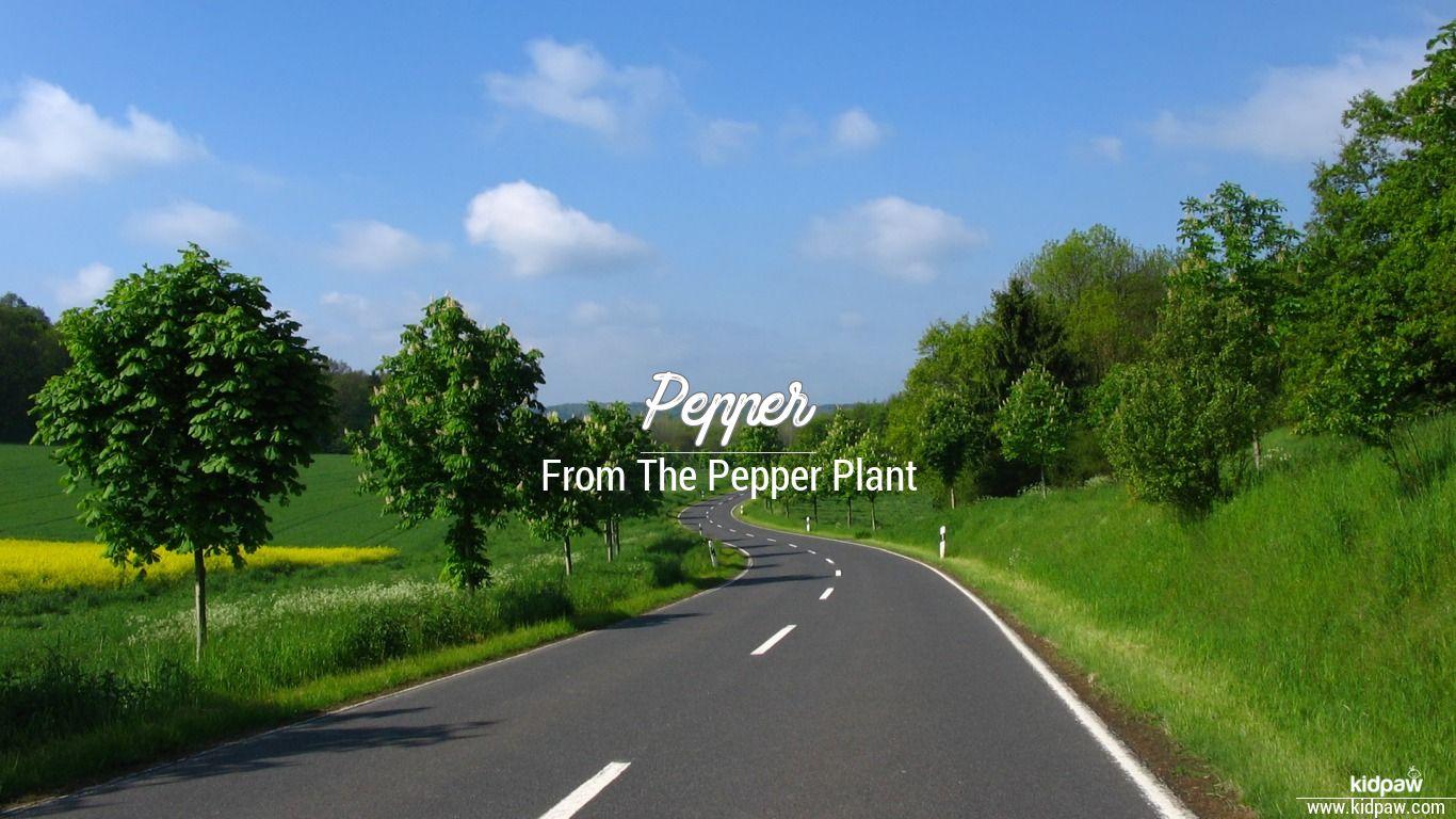 Pepper beautiful wallper