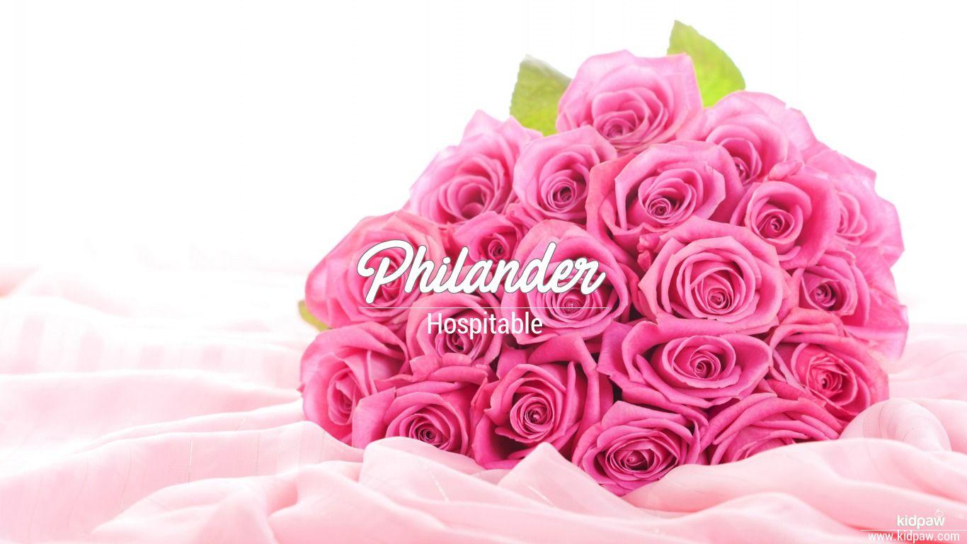 Philander beautiful wallper