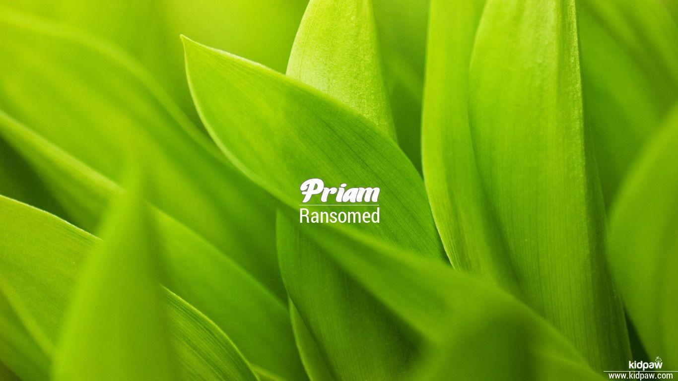 Priam beautiful wallper