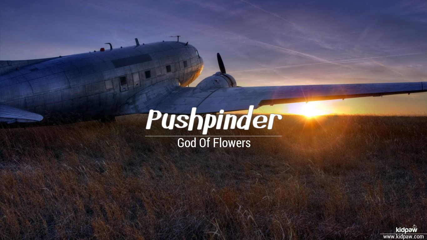 Pushpinder beautiful wallper