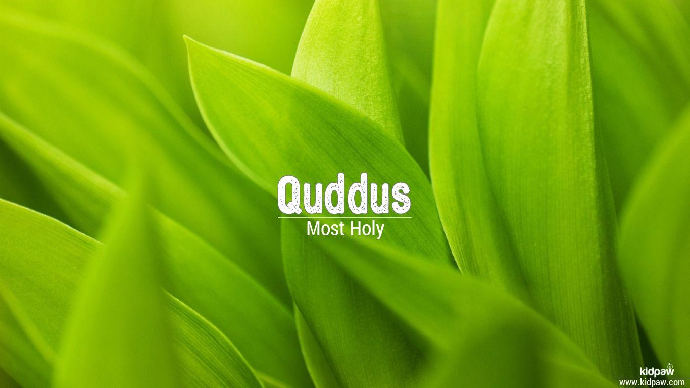 Quddus beautiful wallper