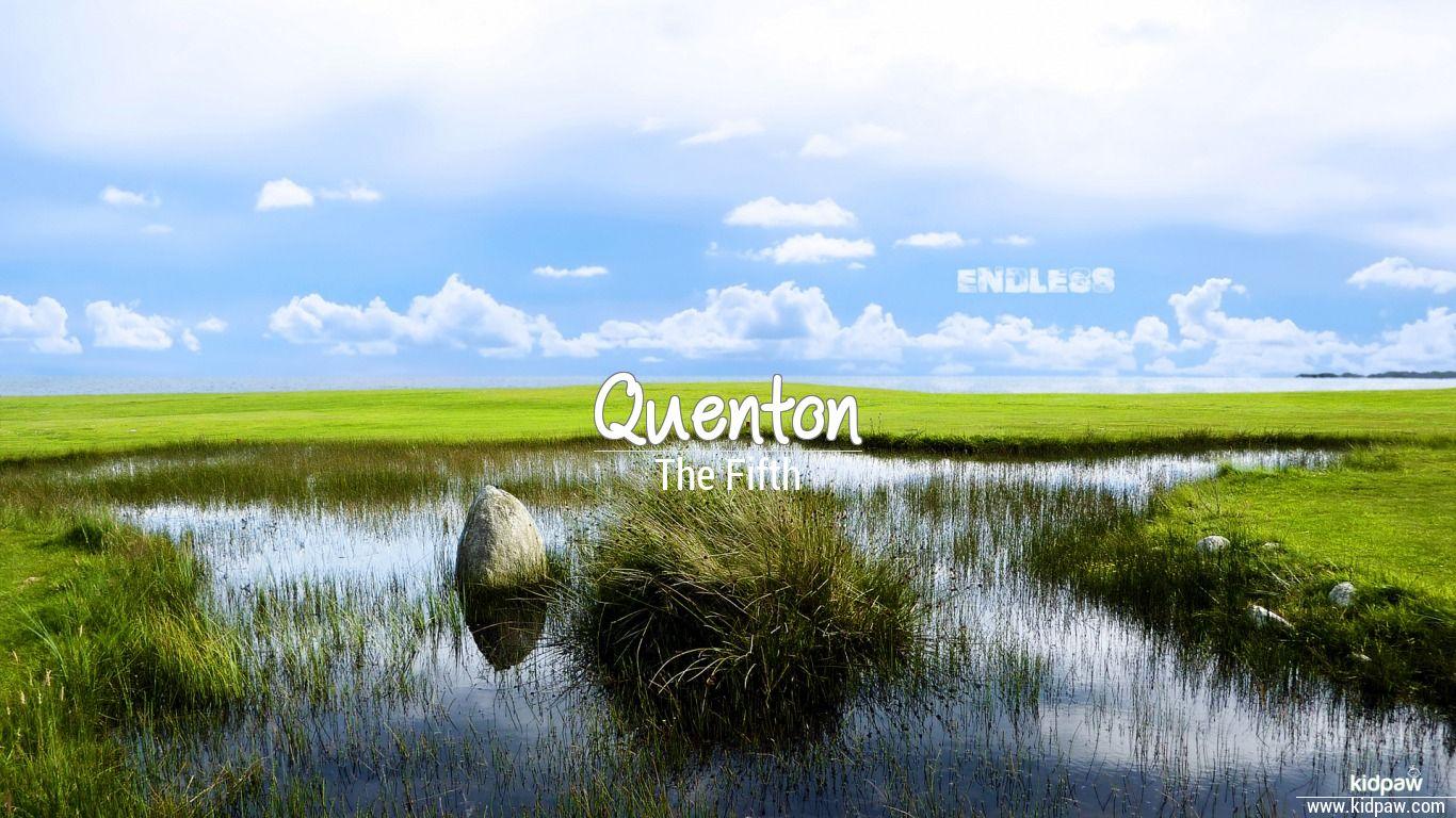 Quenton beautiful wallper