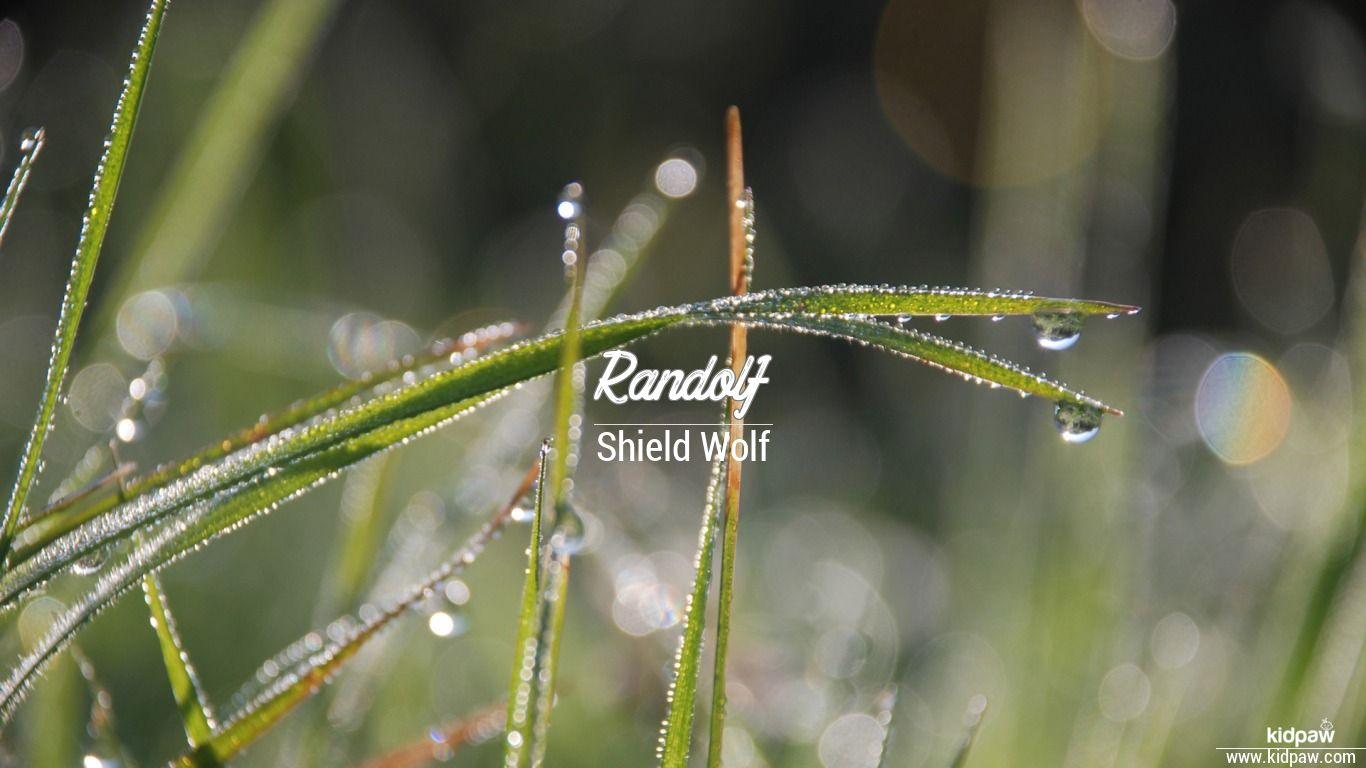Randolf beautiful wallper