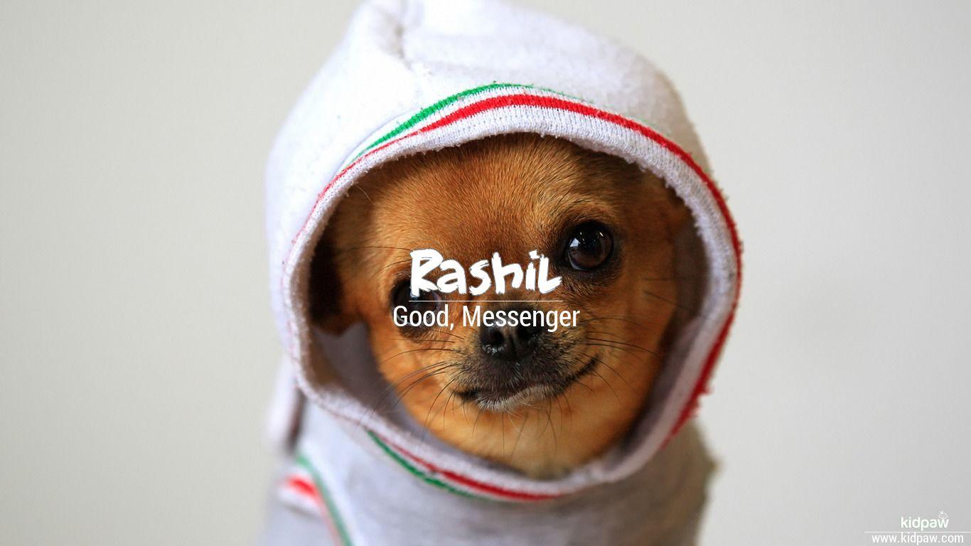 Rashil beautiful wallper