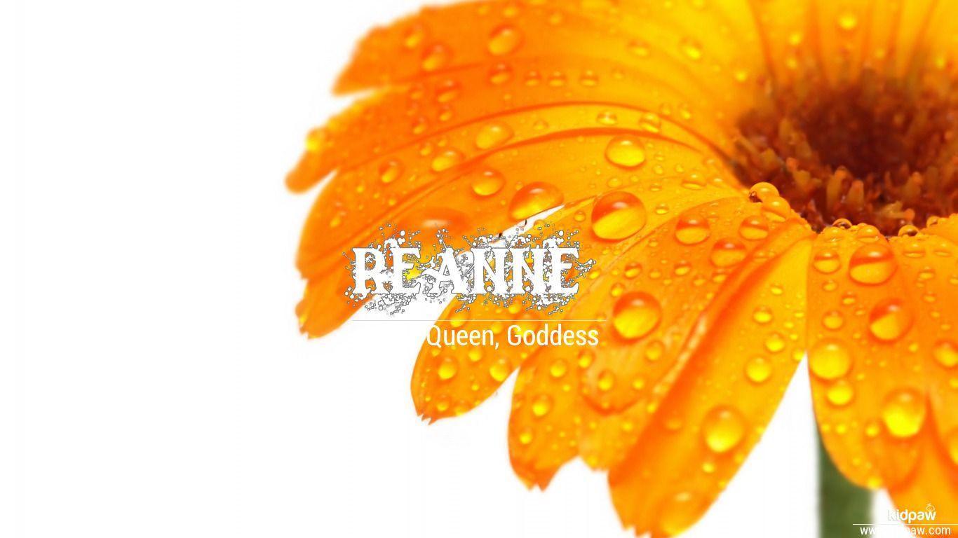 Reanne beautiful wallper