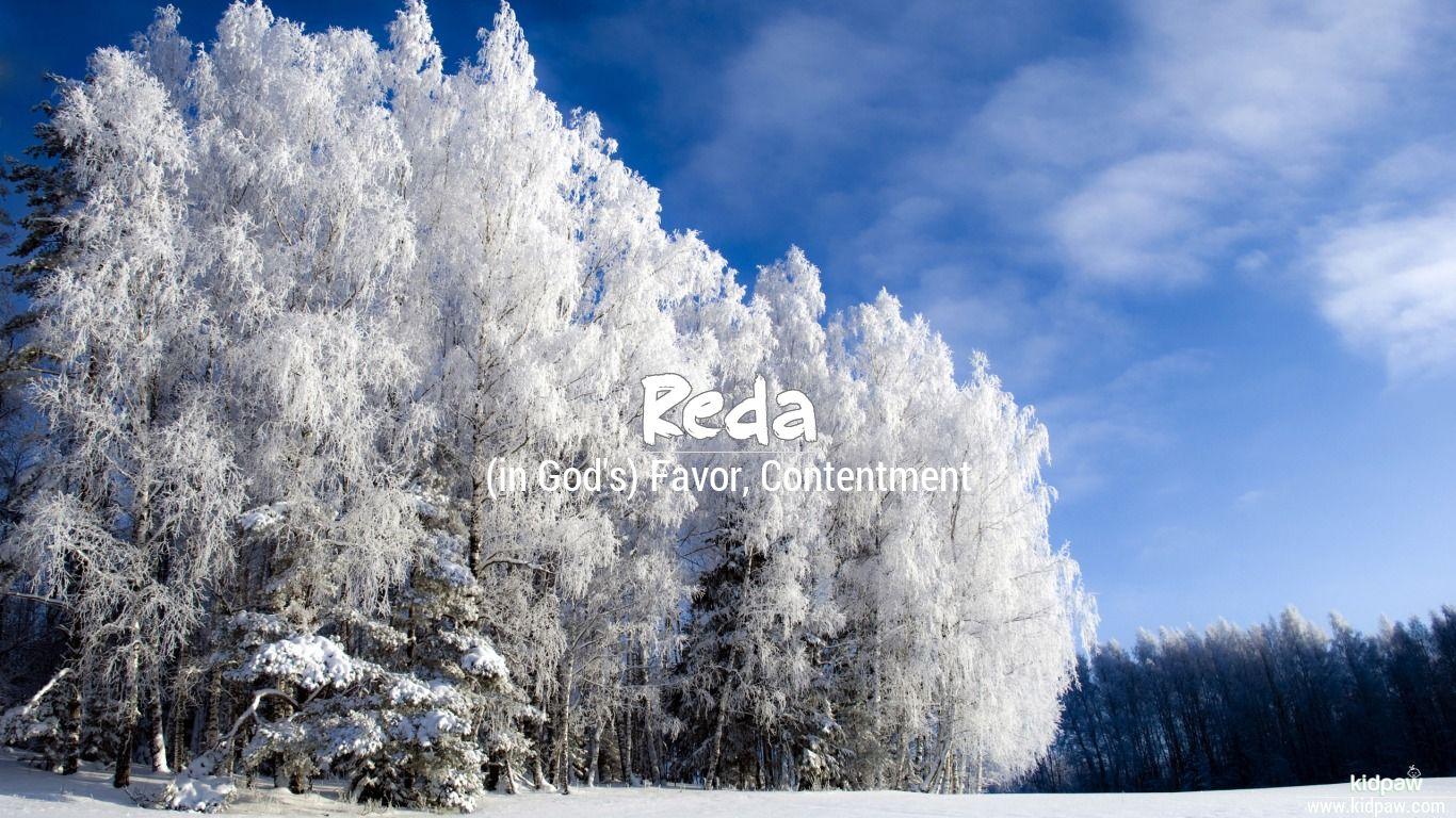 ردا | Reda Name Meaning in Urdu, Arabic names for Boys