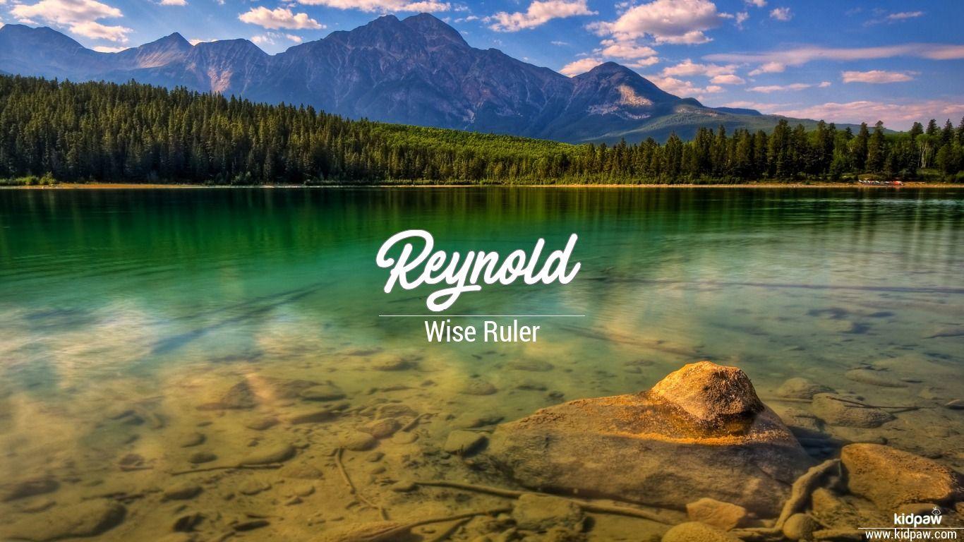 Reynold beautiful wallper