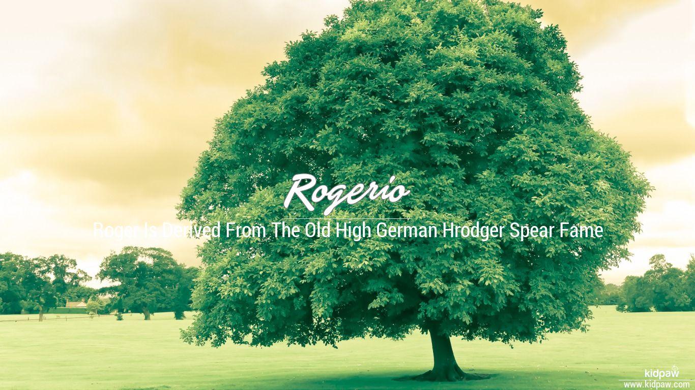 Rogerio beautiful wallper