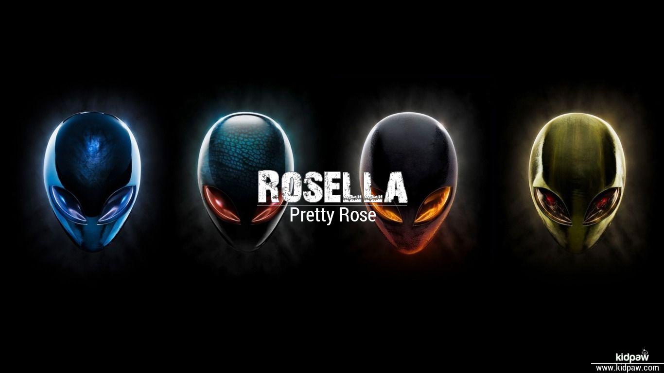 Rosella beautiful wallper