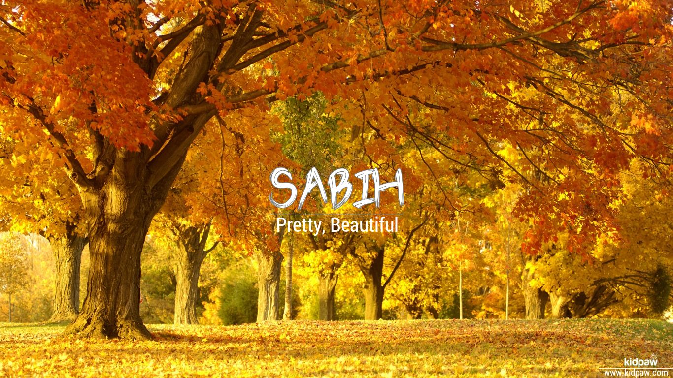 Top 12 Anayat Ullah Name Meaning In Urdu - Gorgeous Tiny