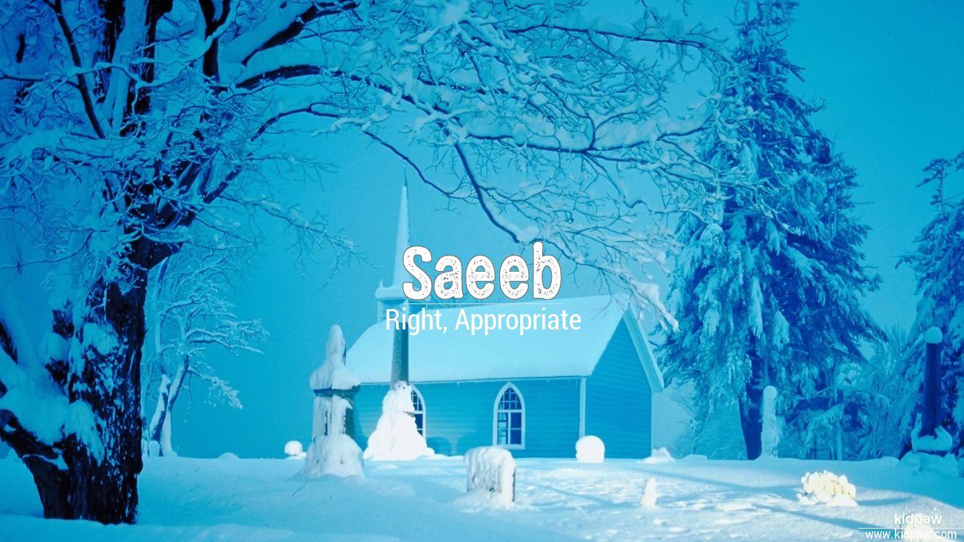 Saeeb beautiful wallper
