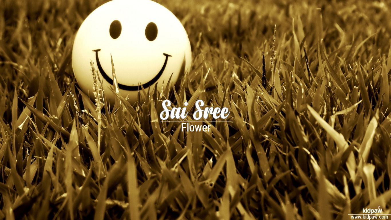 Sai Sree 3d Name Wallpaper For Mobile Write सई शर Name On