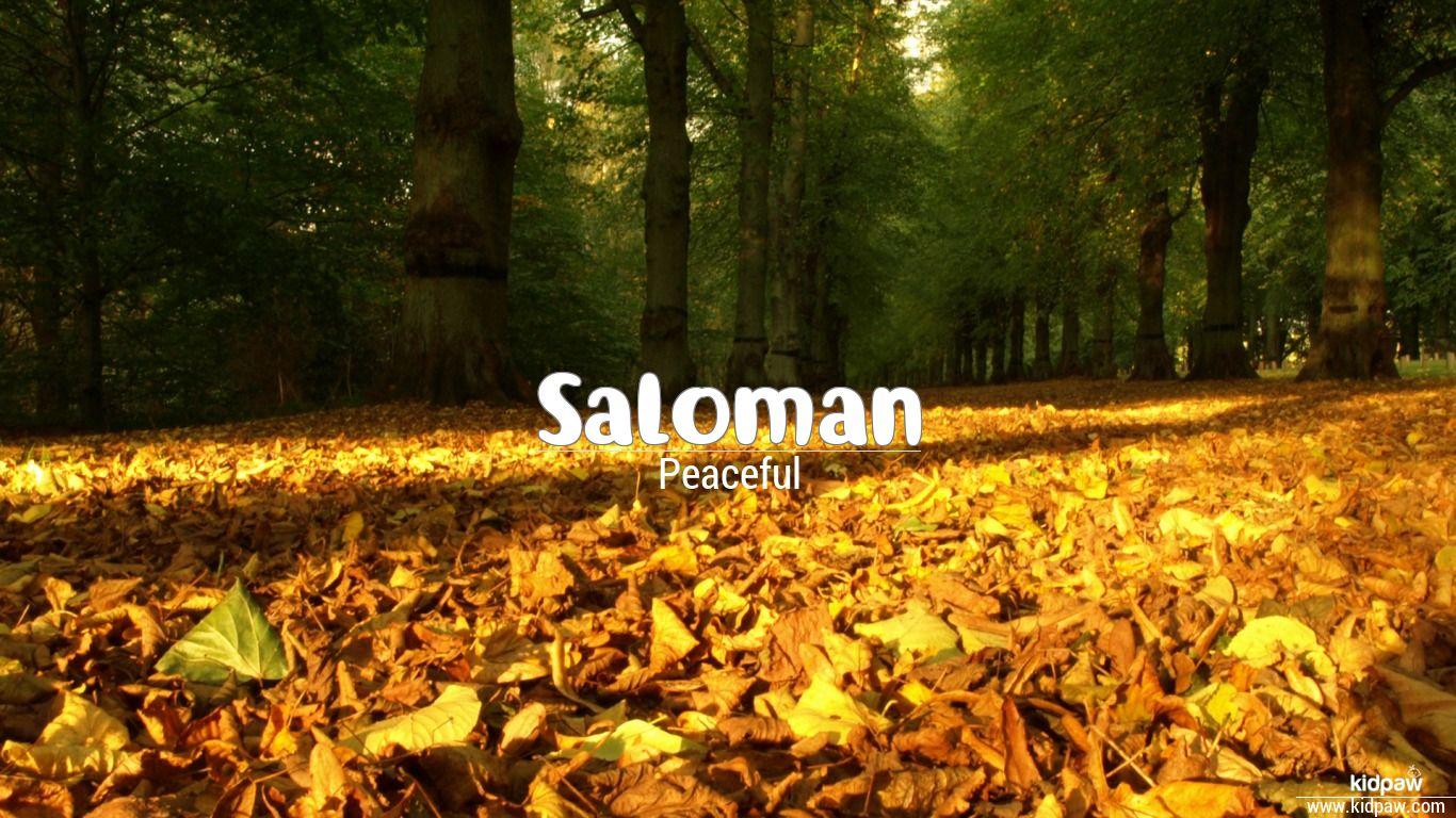 Saloman beautiful wallper